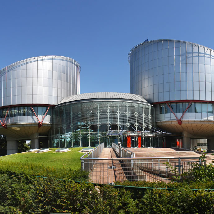 Human Rights court in Strasbourg representing Russian to English human rights translation