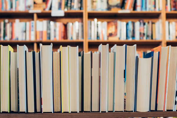 Row of books representing Russian to English literary translations