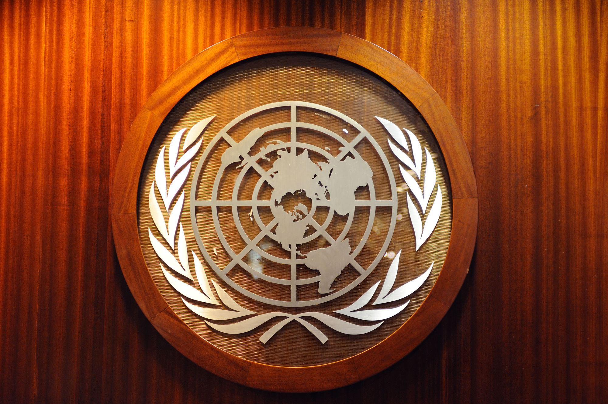 United Nations Logo representing Russian to English translations for UN Committee